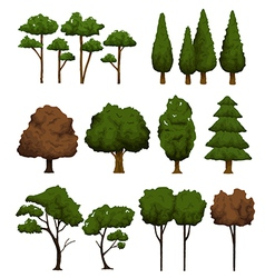 Set of trees for landscape on white background vector image vector image