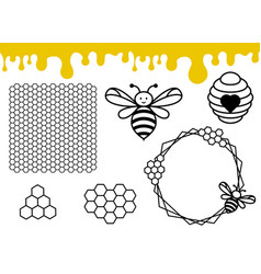Bee hive and honeycomb pattern honey drips border vector