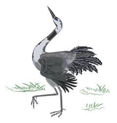 Dancing-crane vector