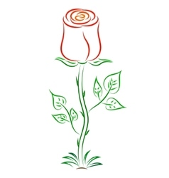 Doodle color abstract red rose vector
