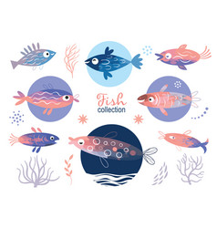 set tropical unusual colorful fishes vector image