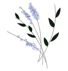 simple of violet flowers with black leaves on vector image