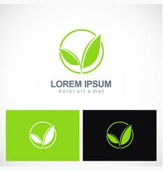 green leaf plant seed logo vector image