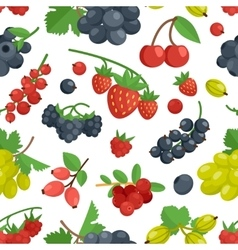 Berries Color Seamless Ornament vector image vector image