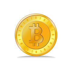 Coin golden bitcoin vector