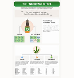 Entourage effect vertical textbook infographic vector
