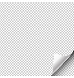 paper page hangs with a wrapped up corner vector image