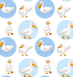 Seamless duck walking and swimming vector image
