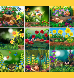 Set background scene with nature theme vector