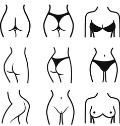 set of stylized female body parts Set of stylized vector image