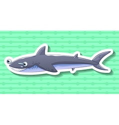 Shark smiling on green background vector image