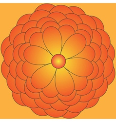 Big orange flower vector image