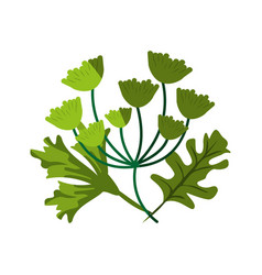 Assorted leaves icon image vector