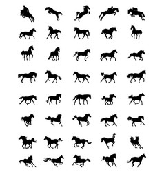 black silhouettes of horses vector image