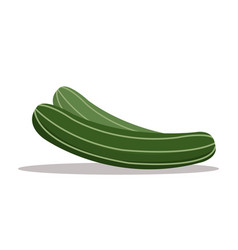 Cucumber nutrition healthy image vector
