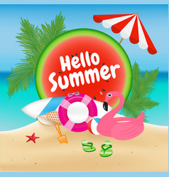 hello summer season background and objects design vector image