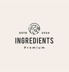ingredients hipster vintage logo icon vector image