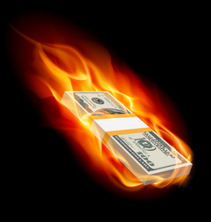 Pile of dollars on fire on black vector