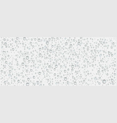 condensation water drops on transparent background vector image