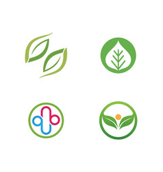 ecology leaves logo vector image