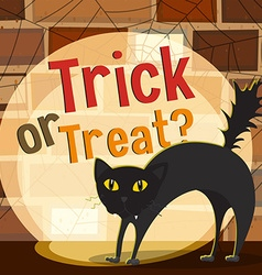 Halloween theme with black cat vector image