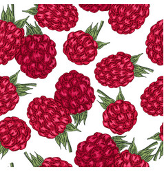 hand drawn sketchy berries ripe raspberry branch vector image