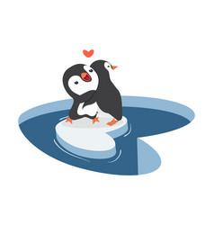 penguins hug on a piece iceberg vector image