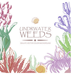 Underwater weeds color background vector