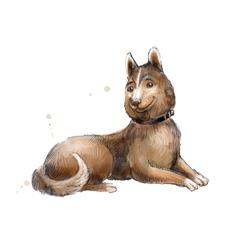 brown mongrel watercolor of mongrel vector image