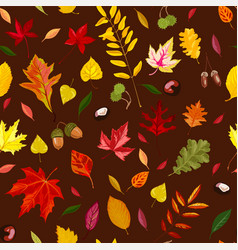 falling autumn leaves chestnuts and acorns vector image