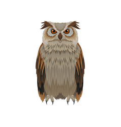 great horned owl with brown plumage front view vector image