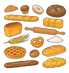 set bread color on the white vector image
