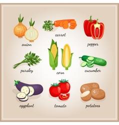 Vegetables ingredients vector image vector image