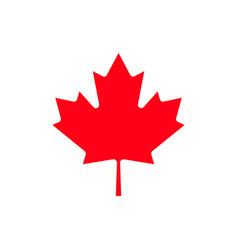 Canada maple leaf icon vector