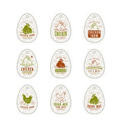 chicken farm tag in form eggs vector image