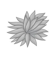Floral botanical flower color ornament grey vector