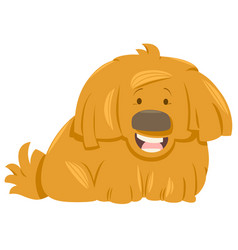 Hairy dog animal character vector