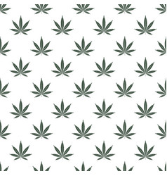 seamless pattern with marijuana leaf cannabis vector image