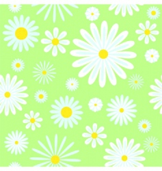 chamomiles seamless pattern vector image