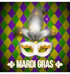 Gold and white carnival mask on colorful vector image