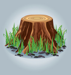 Tree stump with green grass isolated vector image vector image