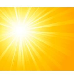 Orange summer sun light burst vector image