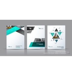 Business set Brochure template layout vector image