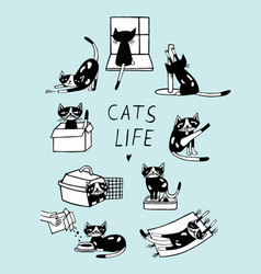 Cats life comic doodle hand drawn vector