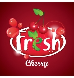 Cherry juice with berries vector