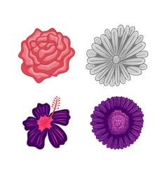 Floral botanical flower ornament flat set vector