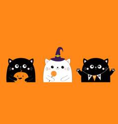 happy halloween holding pumpkin sweet vector image