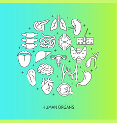 Medical poster with human organs symbols and text vector