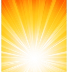 Orange summer sun light burst vector