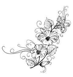 Bindweed flower vector image vector image